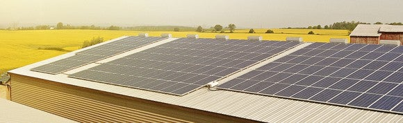 Rooftop solar panels at an agricultural facility, surrounded by yellow-flowering fields on a hazy sunny day.