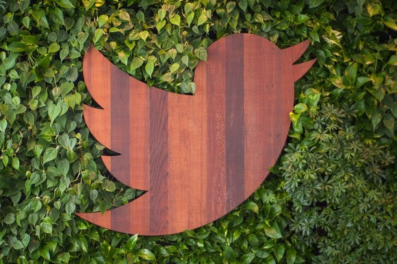 Wood-carved Twitter bird on a bed of ivy
