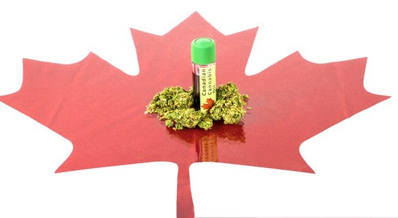 Marijuana buds and CBD oil bottle on top of red Canadian maple leaf drawing