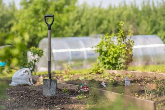 A greenhouse and outdoor community garden with a shovel sticking in the dirt.