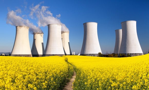 Nuclear power plant in a field of flowers