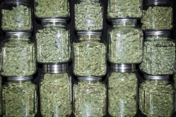 Jars filled with trimmed cannabis stacked on top of each other.