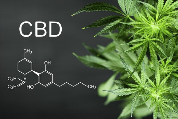 "Cannabis plant on right side and ""CBD"" written on left side with its molecular formula underneath it."