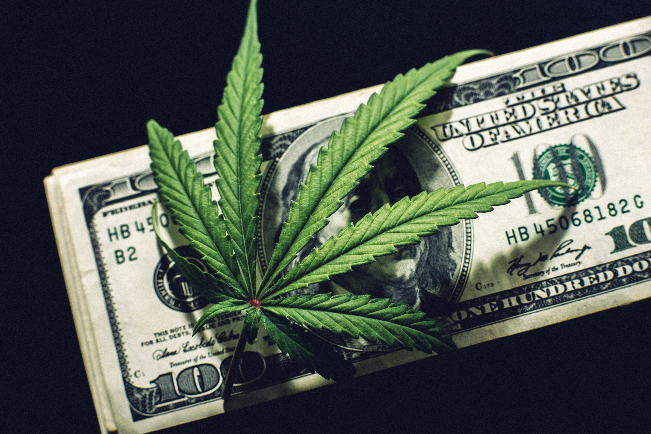 A hemp leaf lying atop a neat stack of hundred dollar bills.