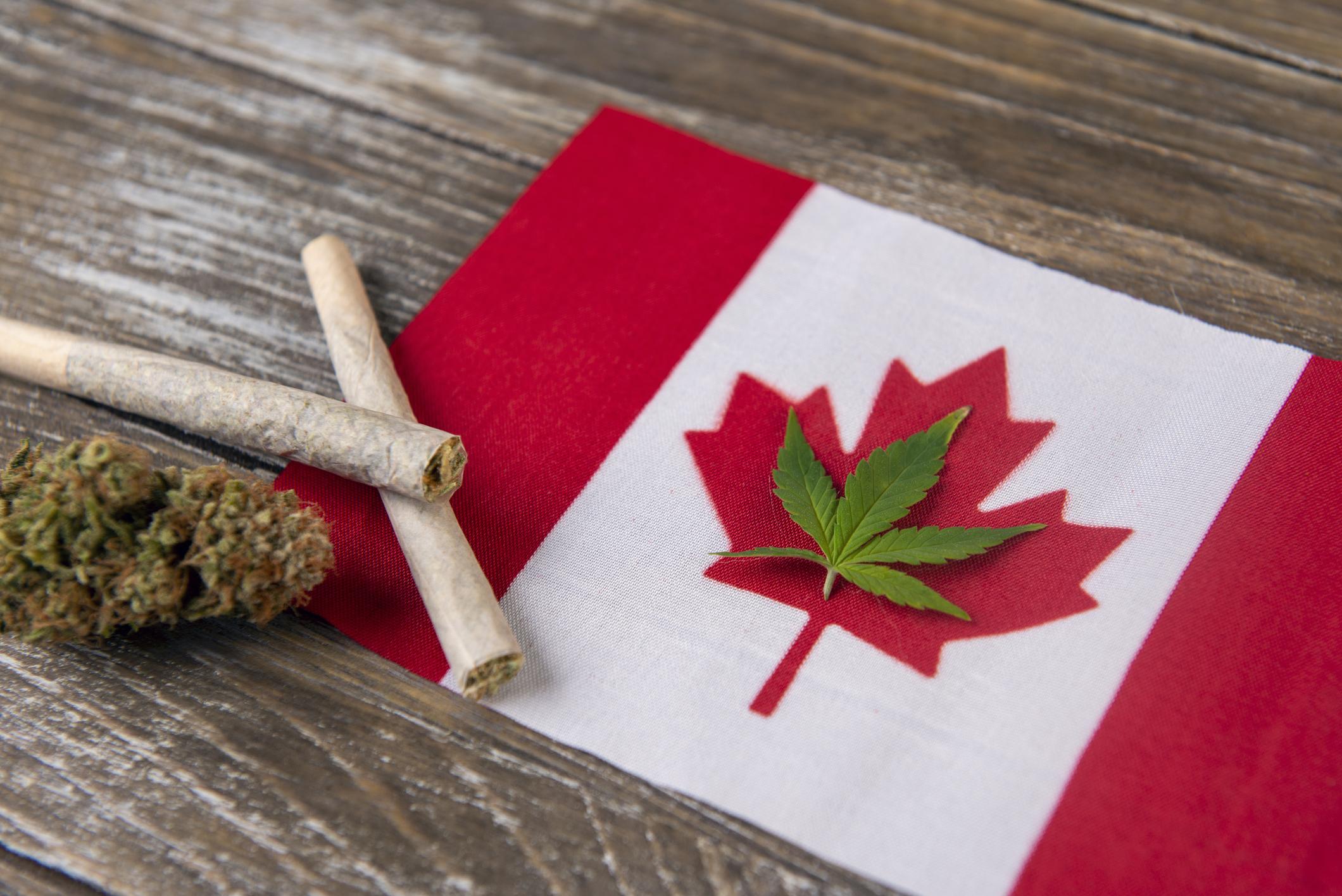 1 Figure That Guarantees a Canadian Marijuana Oversupply Is