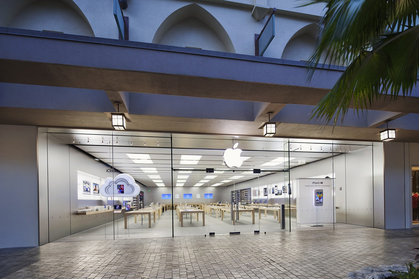 Apple Store retail location as seen from outside, with glass windows showing inside and palm tree next to entrance.