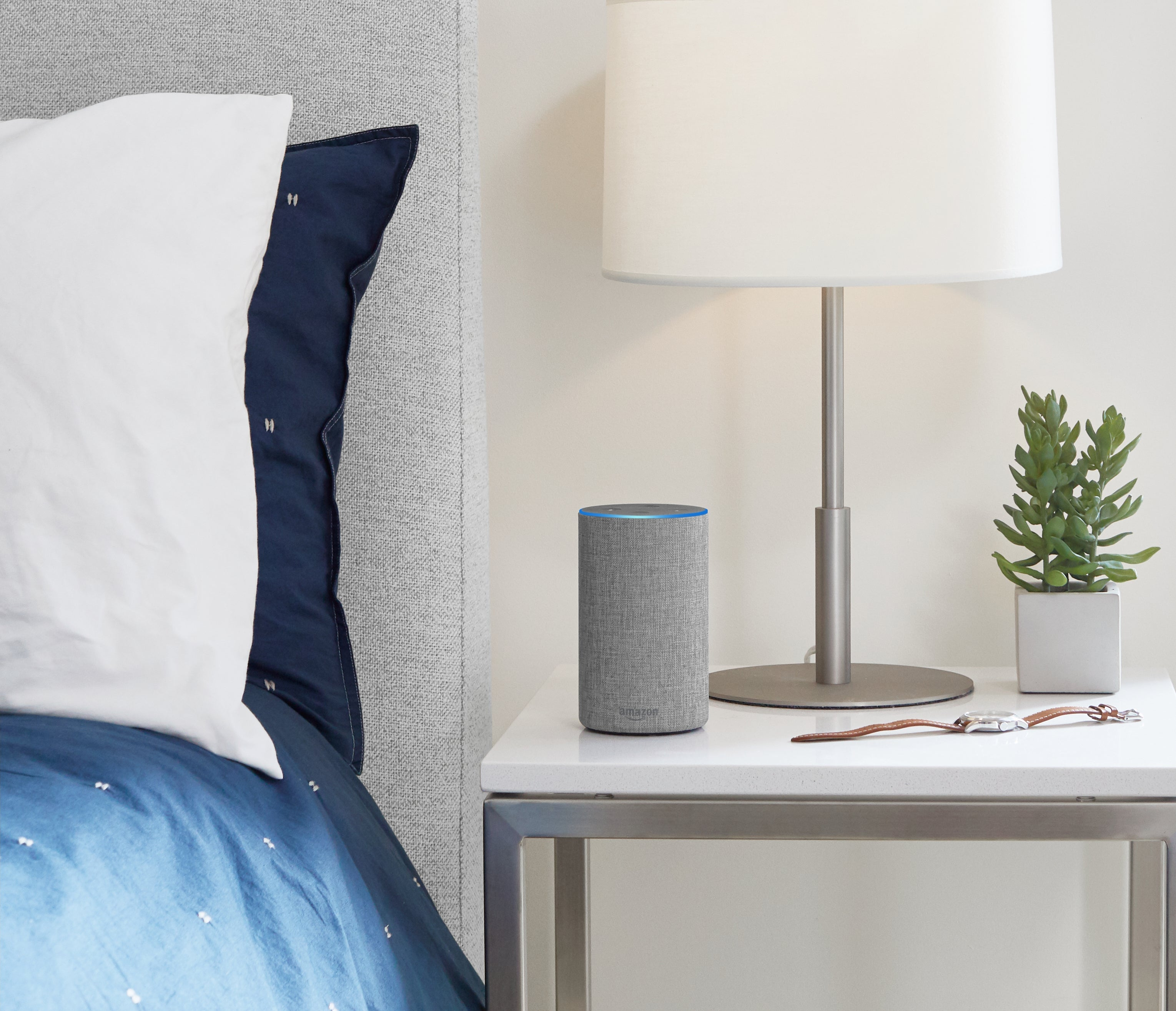A gray Amazon Echo sitting on a bedside table with a lamp, plant, and watch nearby.