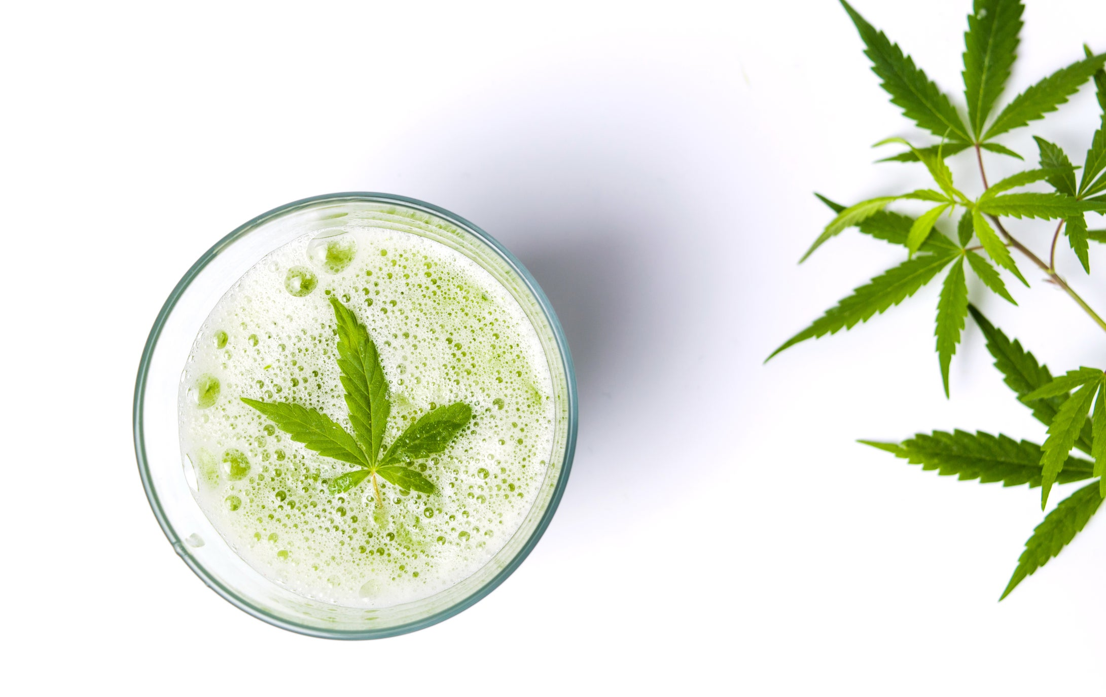 A cannabis leaf floating atop carbonation in a glass, with cannabis leaves set to the right of the glass.