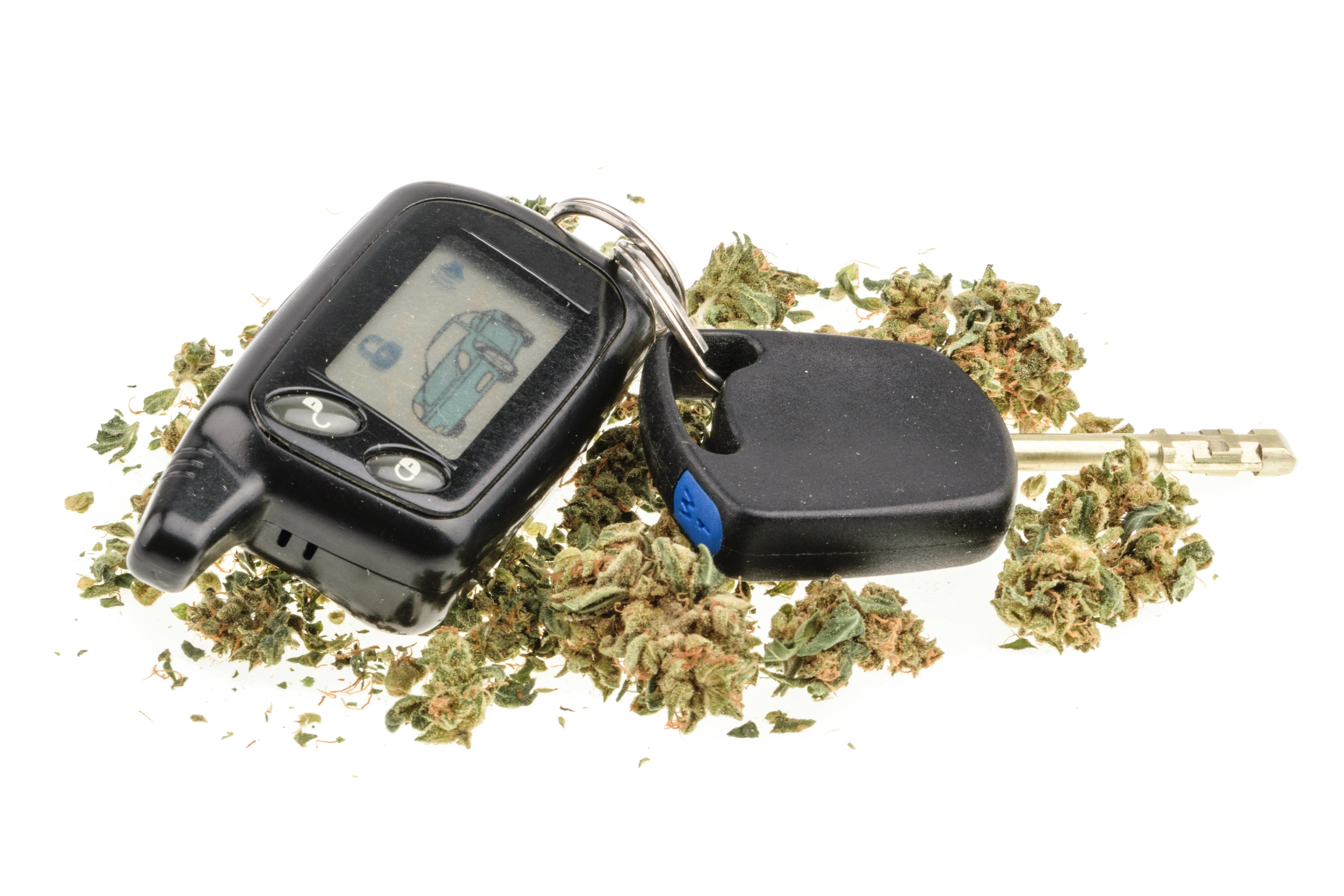 A car key fob that's surrounded by dried cannabis flower.