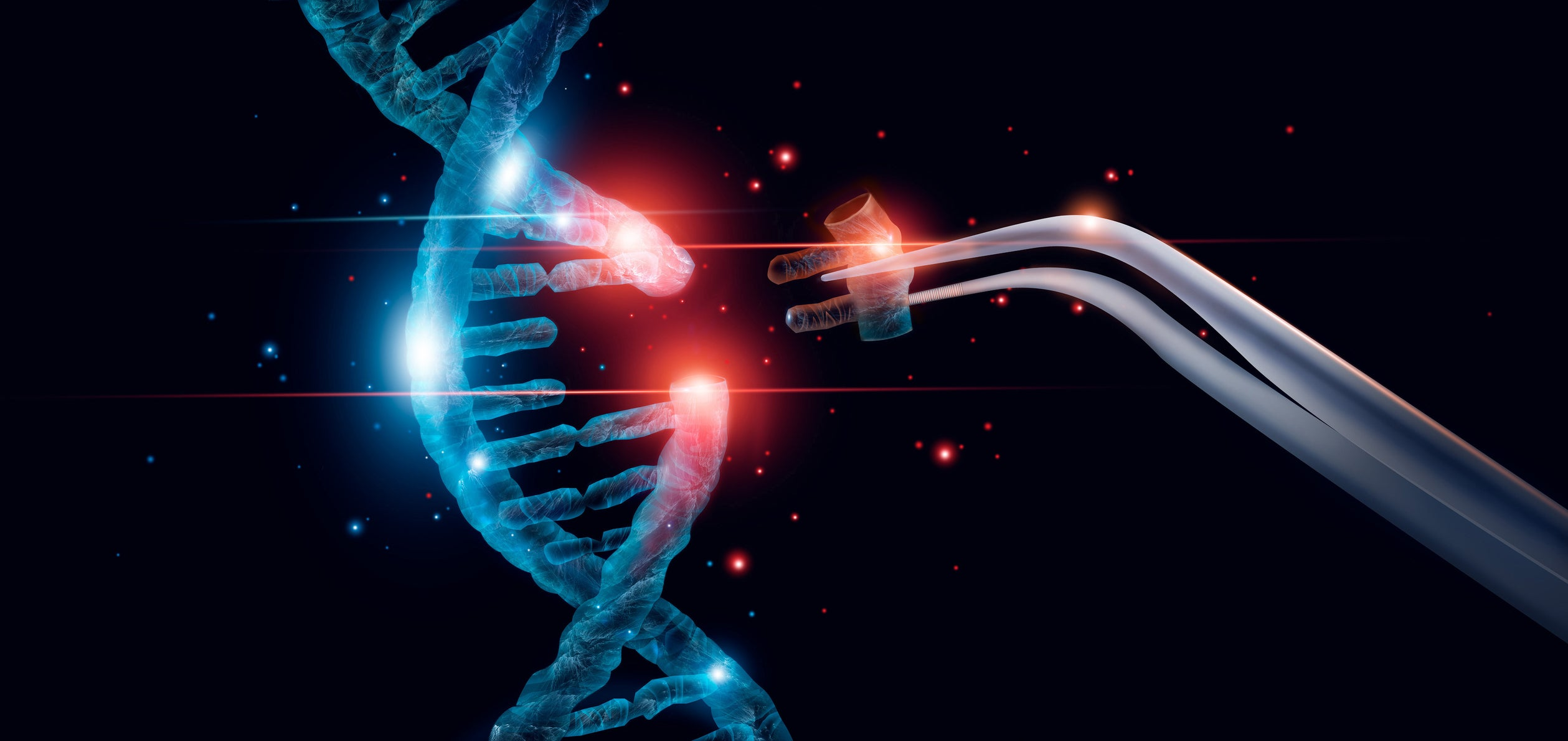 Is CRISPR Therapeutics the Best Gene-Editing Stock Right Now?