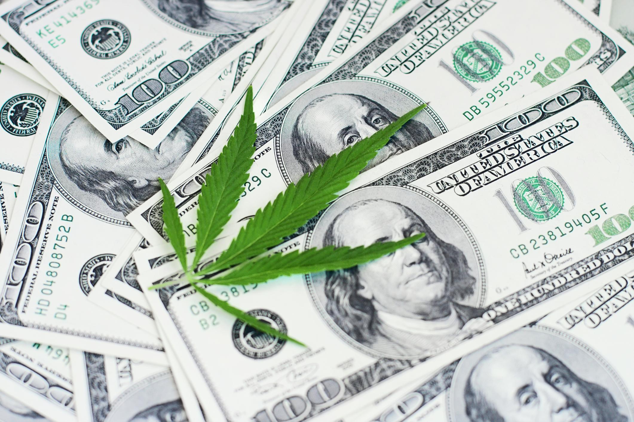 3 Marijuana Stocks That Could Be Millionaire-Makers