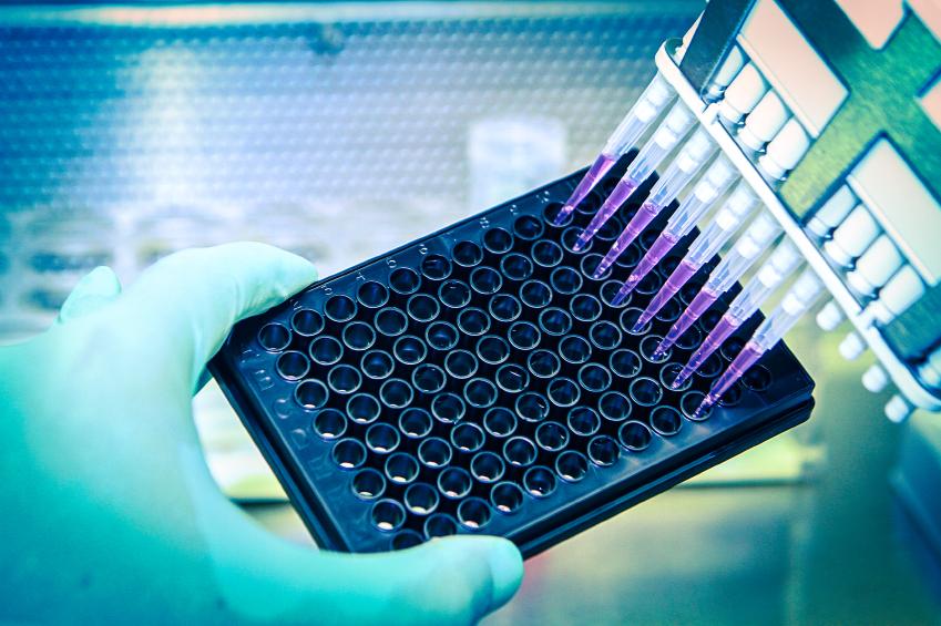 3 High-Yielding U.S. Pharmaceutical Companies to Consider | The Motley Fool