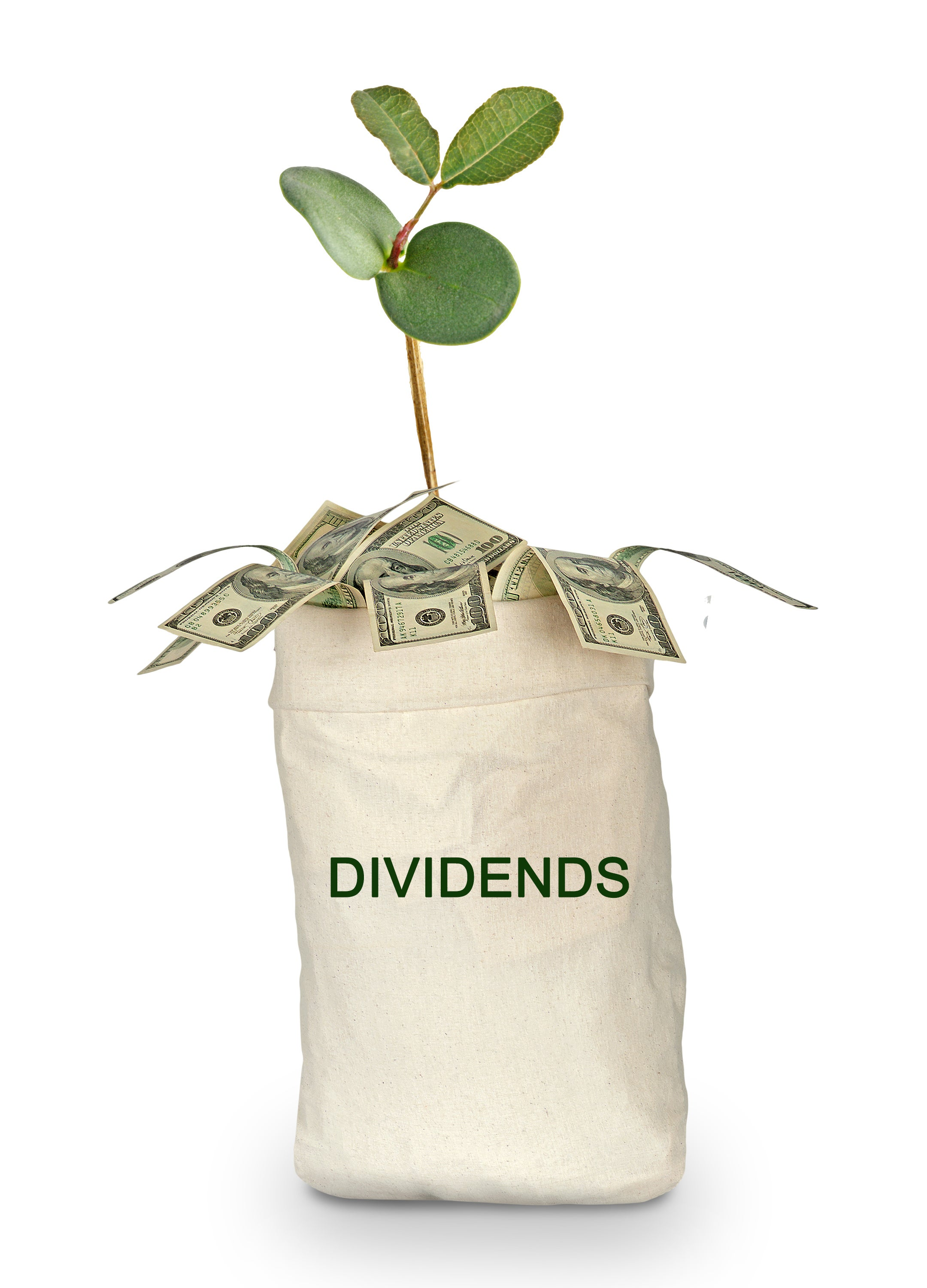 Earn Monthly Dividend Income By Investing in These 3 Stocks | The Motley Fool