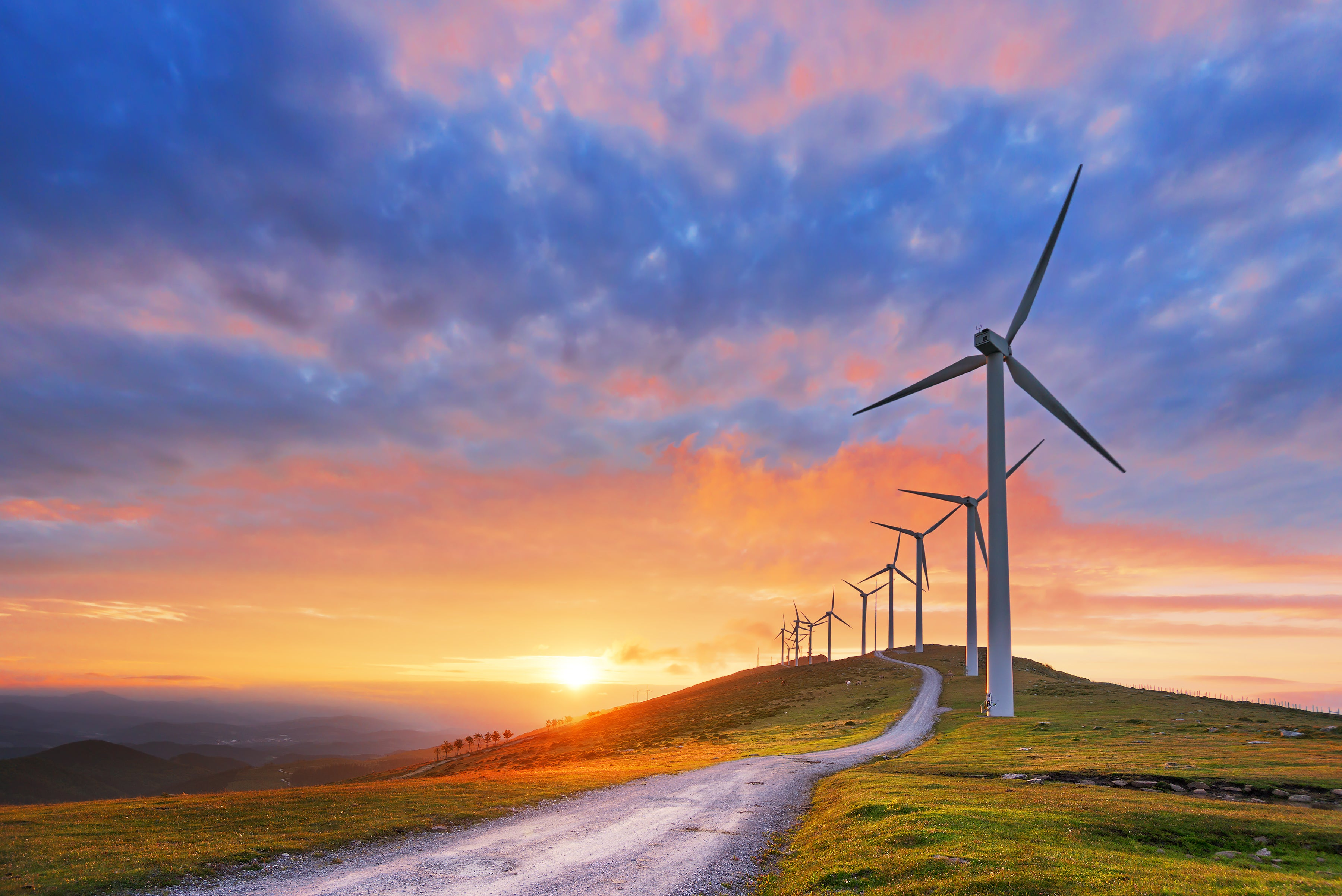 Where Will Renewable Energy Be in 5 Years?