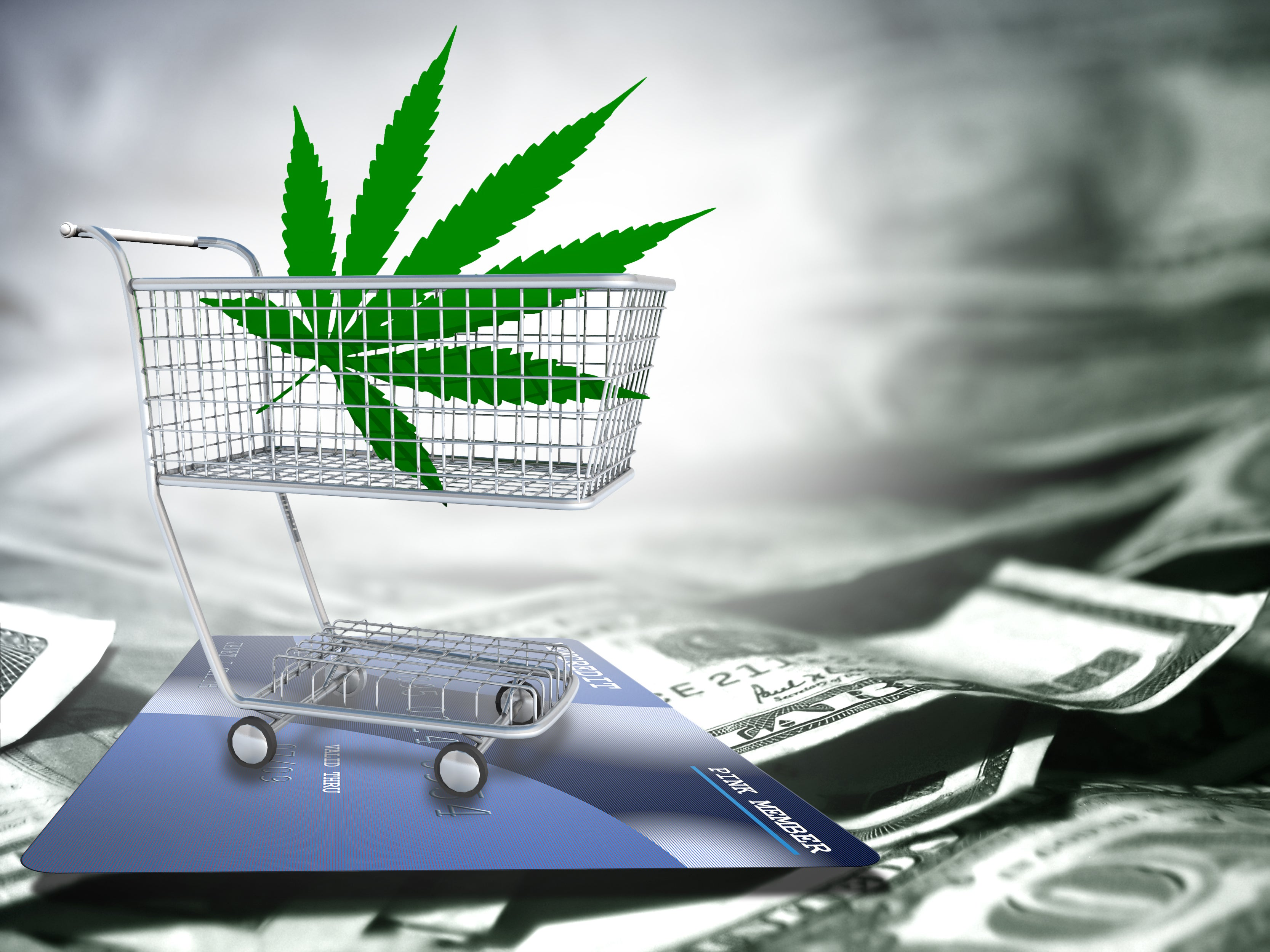 3 Top Cannabis Stocks to Buy in March