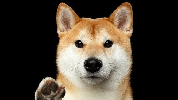 What Can You Do With Dogecoin?