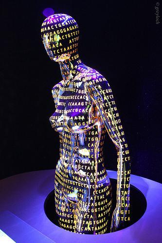 Genomemodel