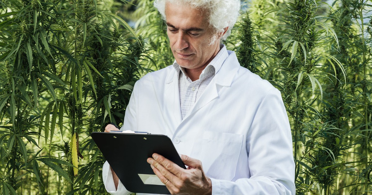 Marijuana Could Be the Answer to Curing Alzheimer's Disease, Study Shows -- The Motley Fool