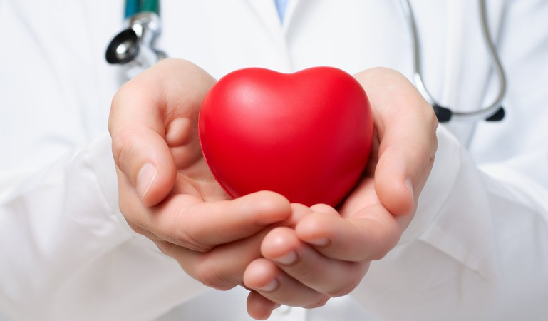doctor holding heart organ transplant concept
