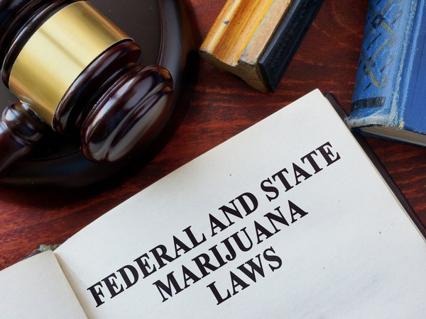 Federal State Marijuana Laws Gavel Cannabis THC Pot Weed Getty