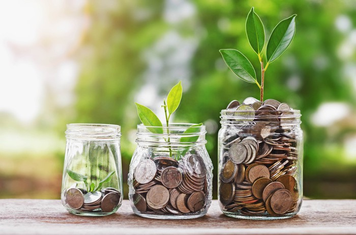 Three jars of coins with seedlings sprouting from them