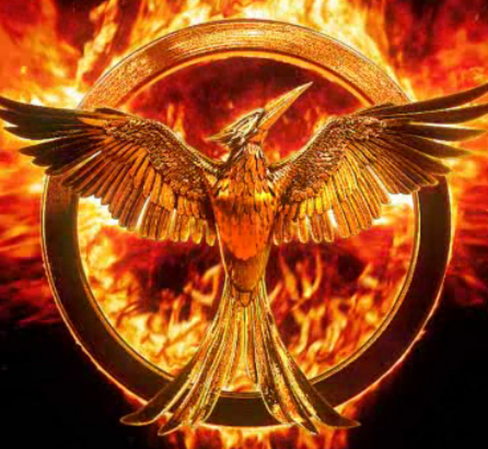 Highest-grossing movies 2014, Hunger Games: Mockingjay