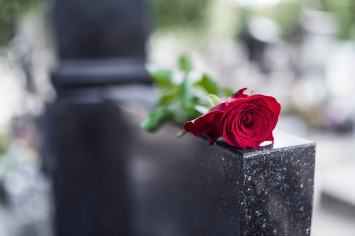 A rose lies on top of a headstone.