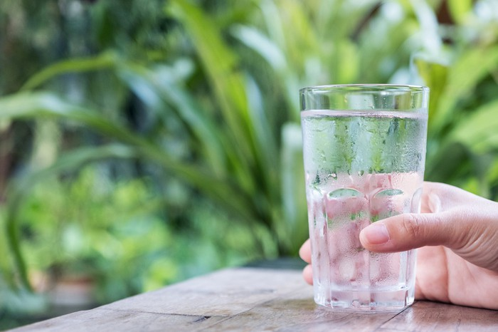 Hand holding a glass of water with plants in the background