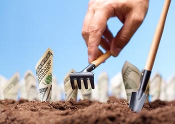 Plant Money Hundred Dollar Bills Long Term Investing Getty