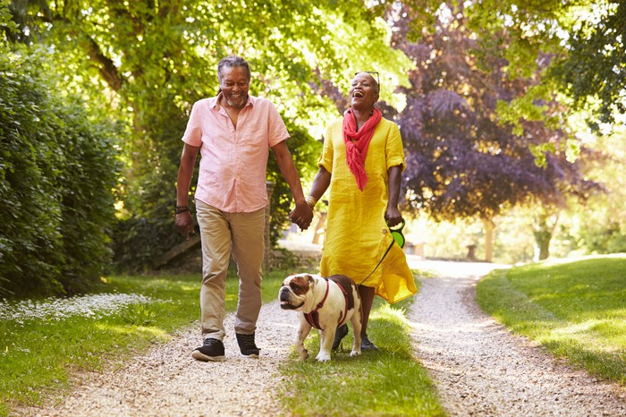 A laughing retired couple walk their bulldog along a forest path.