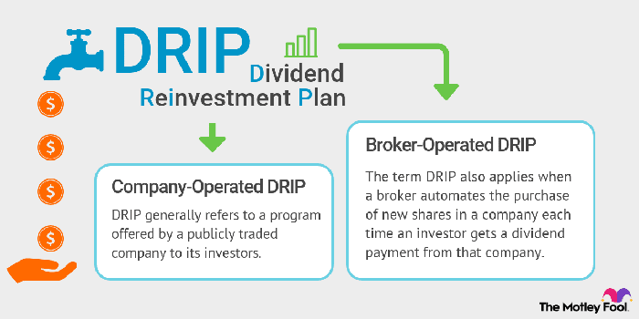 Comparison of company-operated DRIPs versus broker-operated DRIPs