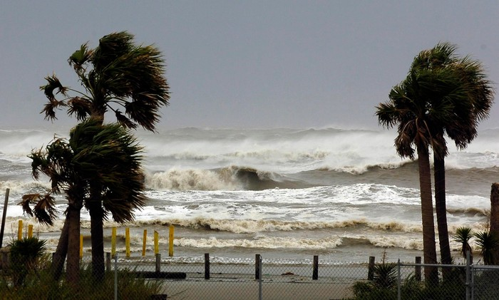 Ocean shoreline with large waves and palm trees being battered by strong wind