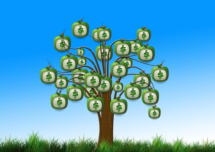 A tree growing dollar signs