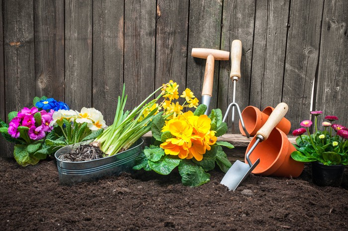 An assortment of gardening tools sitting in soft soil waiting to be used.