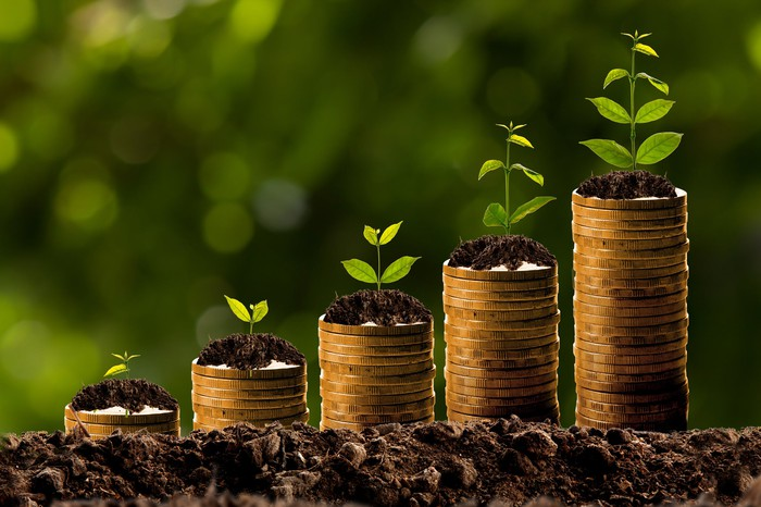Successively larger stacks of coins placed in the dirt with green plants on top symbolizing growth.