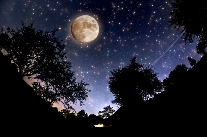 Full moon in a tree-lined night sky full of stars