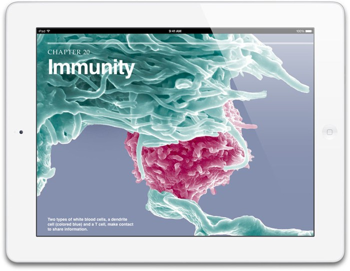 The iPad with Retina Display