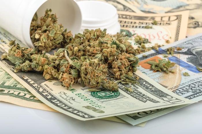 Marijuana buds sitting atop a pile of cash.