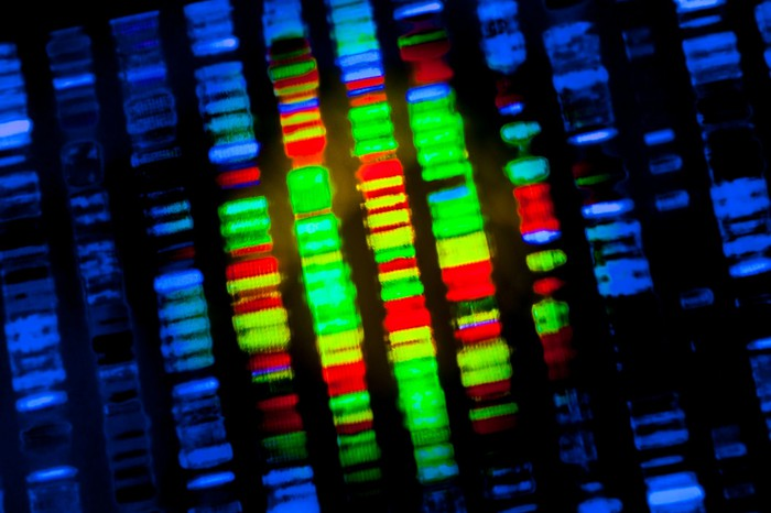 DNA sequence under microscope