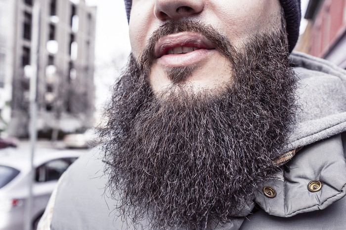 lower half of bearded man's face