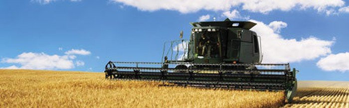 A baler plows through a field of wheat.