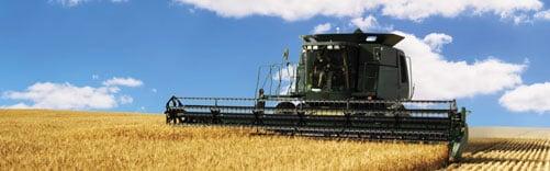 A baler plows through a field of wheat.