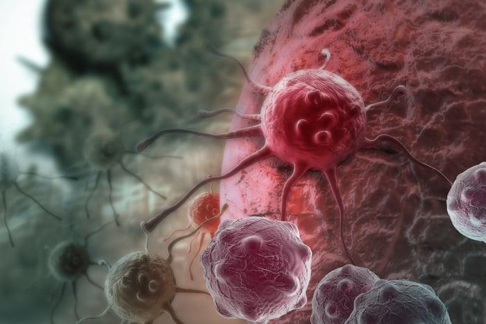 Illustration of blood cancer cells