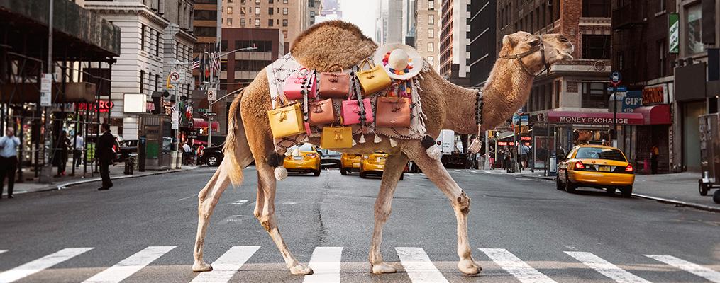 Camel carrying new Kate Spade handbags