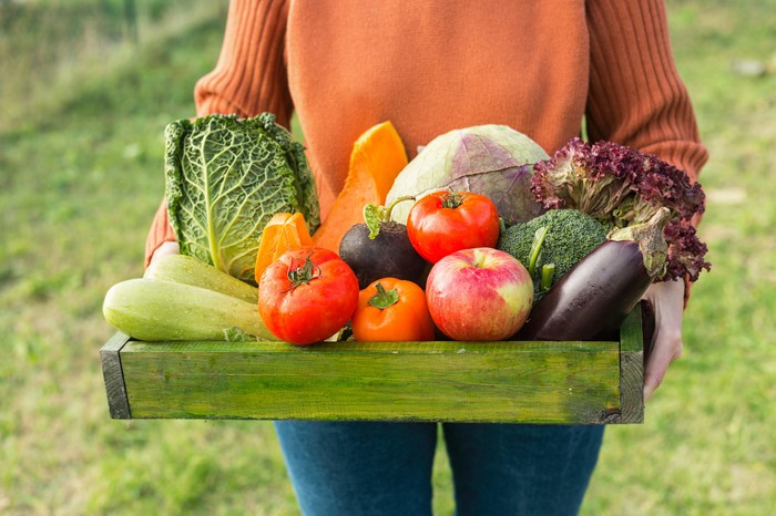 A farmer walks through a yard carrying a tray filled with freshly picked vegetables.