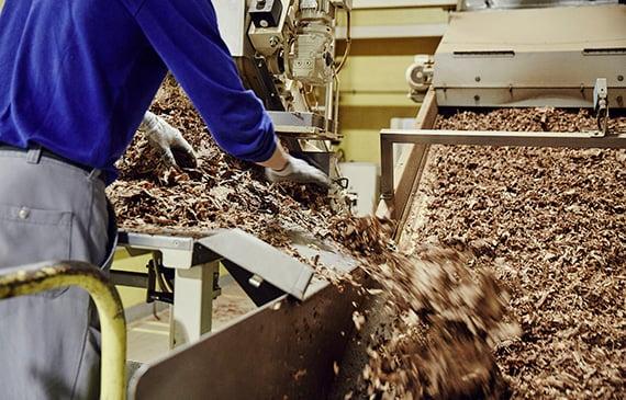 A tobacco leaf sorting machine.