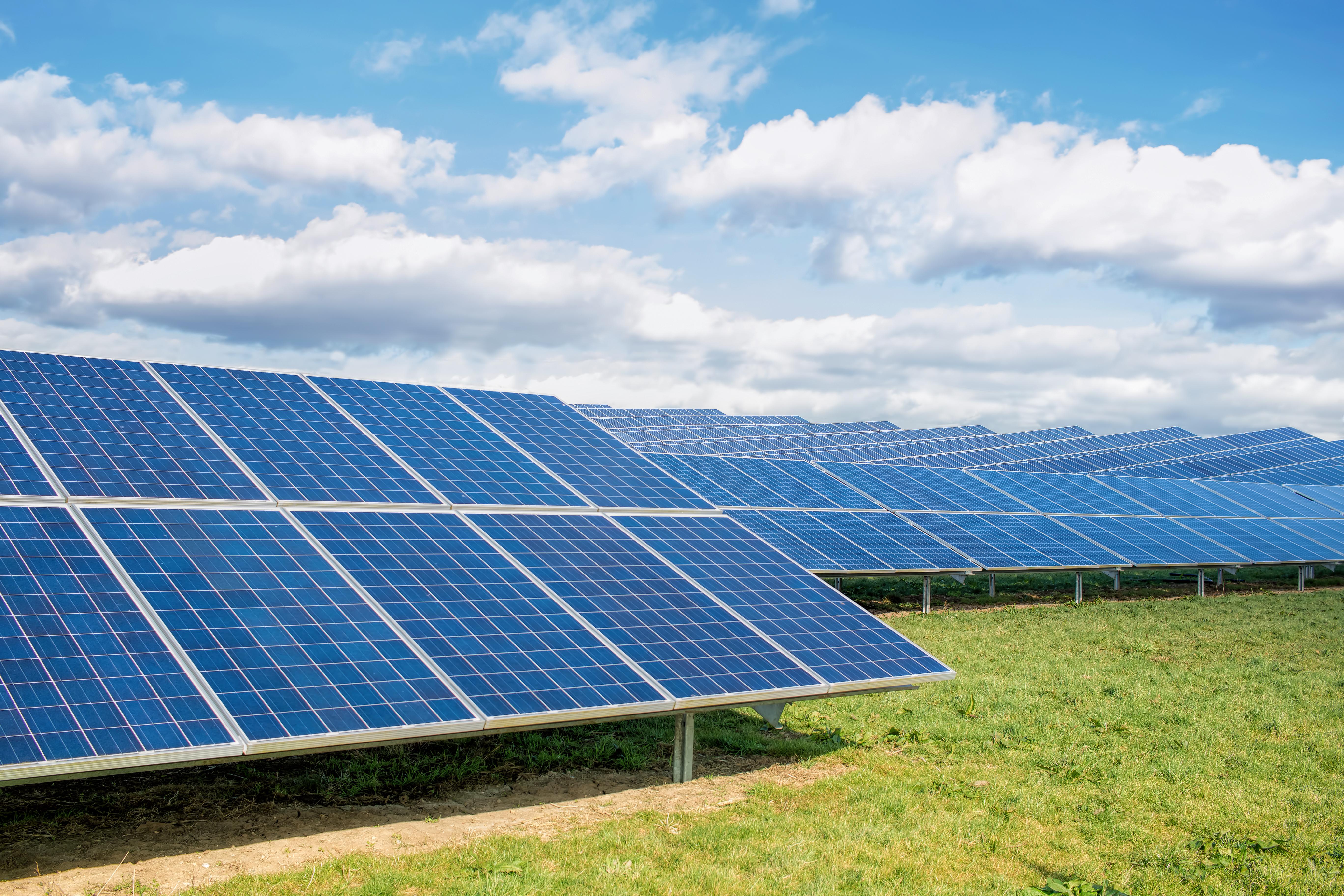 Solar farm shown on a sunny day.