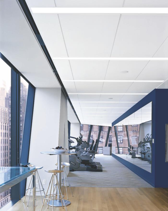 USG Acoustic panels