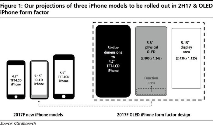 This image compares the display areas and technologies of the upcoming iPhone models.