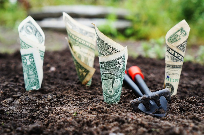 Money growing out of soil.